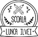 Şcoala Lunca Ilvei Logo